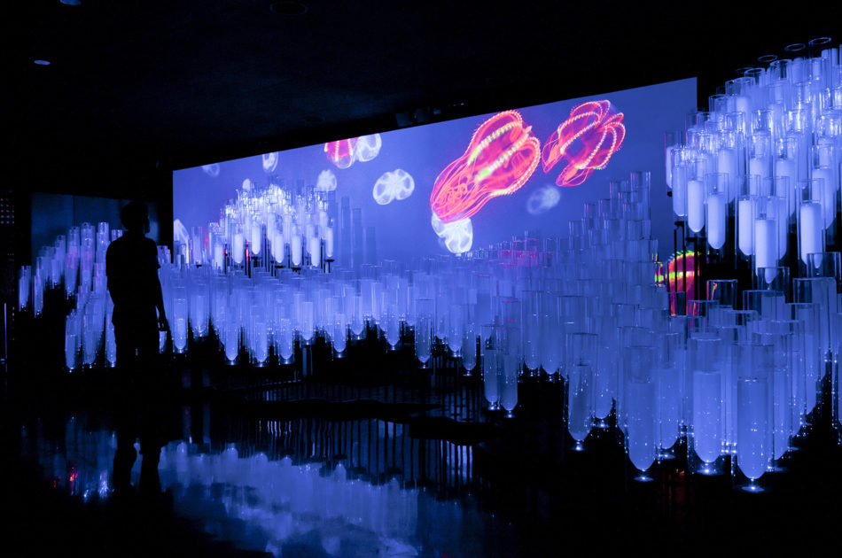 A mapping projected onto bottles at the Deep Ocean section of the Spanish Pavilion, World Expo Yeosu 2012.